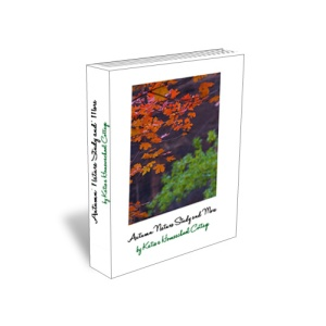 Autumn nature study and more 3d cover_edited-2